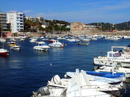 Toulon - Saint-Louis du Mourillon - port de plaisance