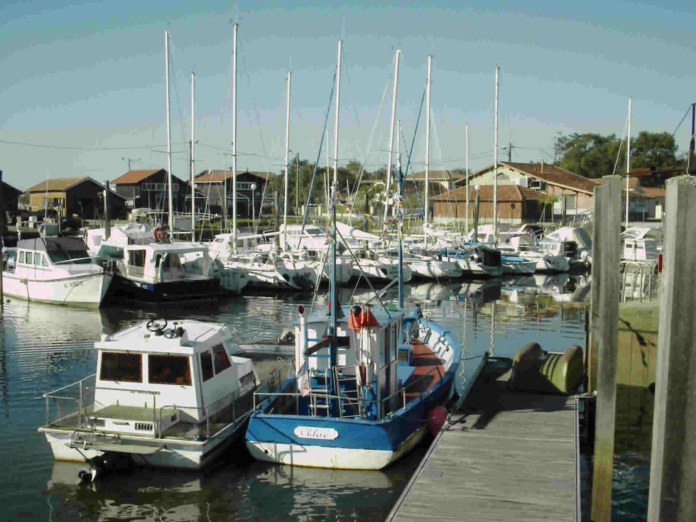 Cassy - Port Lanton