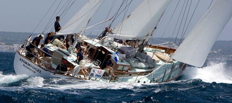 bateau  Stormvogel