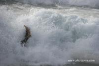 Surf en bretagne - La Palue (29) - 37