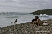 Discussion de Surfeur à La Palue (29)