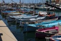 Pointus sur le port de Nice