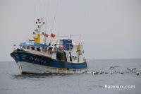 Pêche au Guilvinec