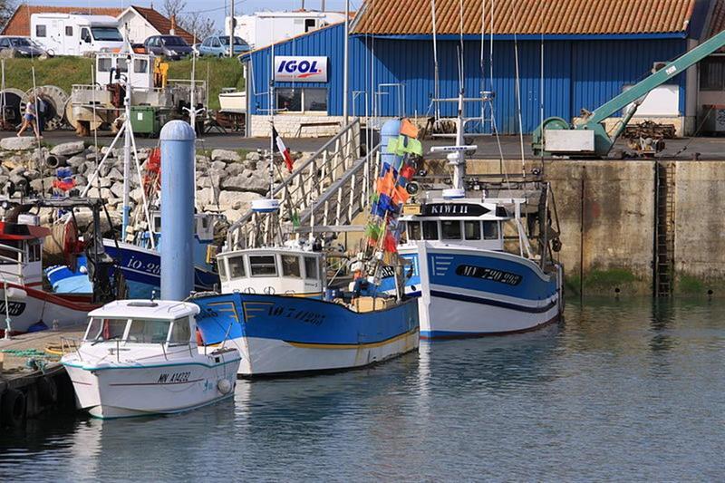 Port La Cotiniere 17 Informations Maritimes Sur Le Port De Plaisance