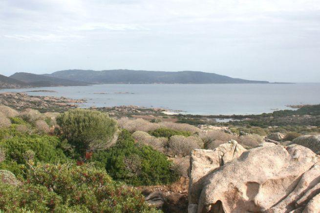 Vue du parc naturel de l'Asinara